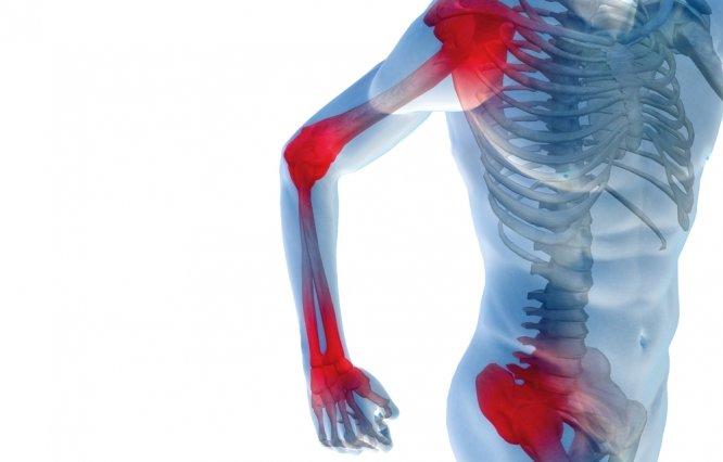 от каких паразитов болят суставы
