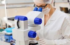 Лечение глистов народная медицина