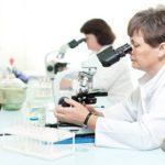 Анализ на ехинококк: кровь на антитела, расшифровка