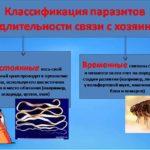 Жизненный цикл паразитирующих организмов