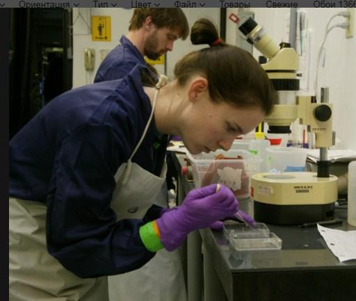 как обнаружить паразитов в организме человека мрт