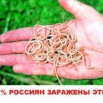 Чем опасни глисти для человека: вред для организма