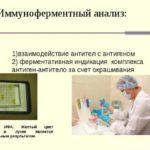 Анализ на описторхоз: диагностика по крови, расшифровка показателей