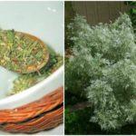Травяной сбор от паразитов в организме: отзиви о травах
