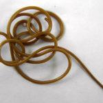 Конский волос червь: чем опасен для человека, фото паразита