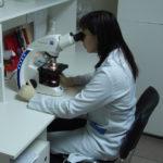Анализ кала на ентеробіоз: как сдавать, расшифровка и описание исследования