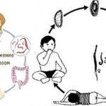 Жизненний цикл острици: инкубационний период развития