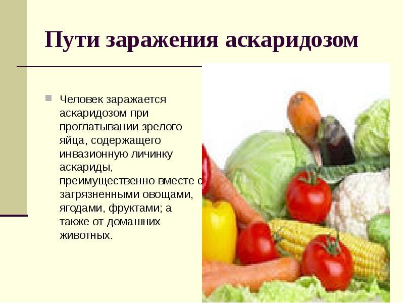 рецепт от глистов для детей