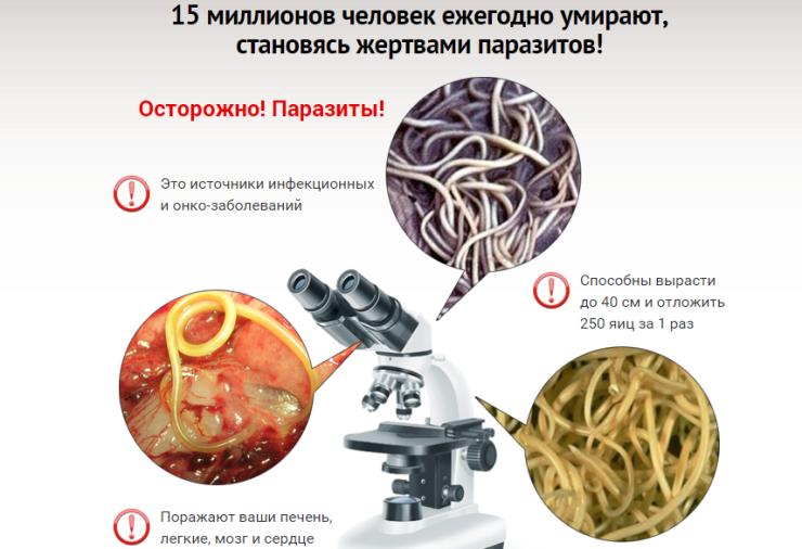 риол от паразитов отзывы