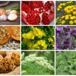 Паразити в организме человека: фото, симптоми, признаки и лечение народними средствами
