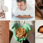 Аюрведа от паразитов: виданга и мумие для лечения организма