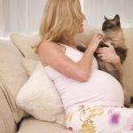 Токсоплазмоз и беременность.
