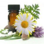 растительные препараты от глистов