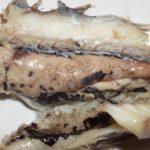 Метагонимоз: фото возбудителя кишечного трематода у человека в организме