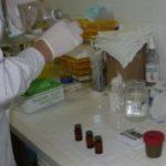 Сколько нужно кала для анализа на яйцеглист взрослому: как правильно собирать и сдавать материал