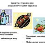 Меры по защите от паразитов