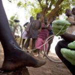 Гвинейский червь ришты