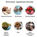Как убрать паразитов из организма: народние средства в домашних условиях и очищение навсегда