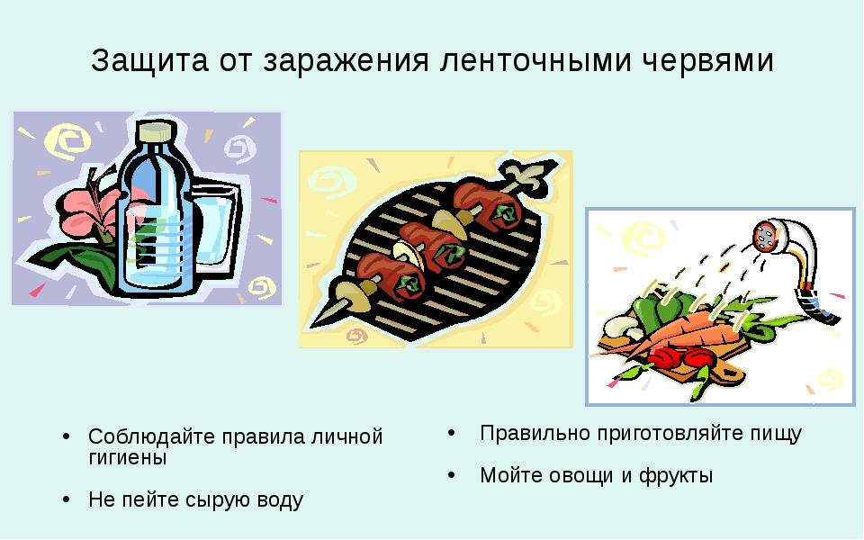 паразиты кишечника кошек