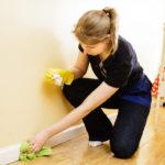 Обработка квартири от глистов: как убить яйца остриц и паразитов