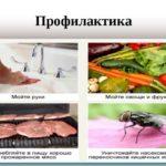 Чистка организма от паразитов народними средствами в домашних условиях: средства и препарати
