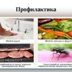 Меры профилактики паразитов