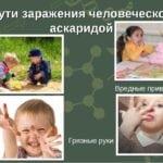 Самоинвазия: что ето, симптоми и види, как происходит глистное заражение