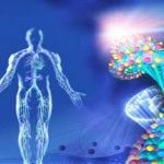 биорезонансная терапия показания и противопоказания