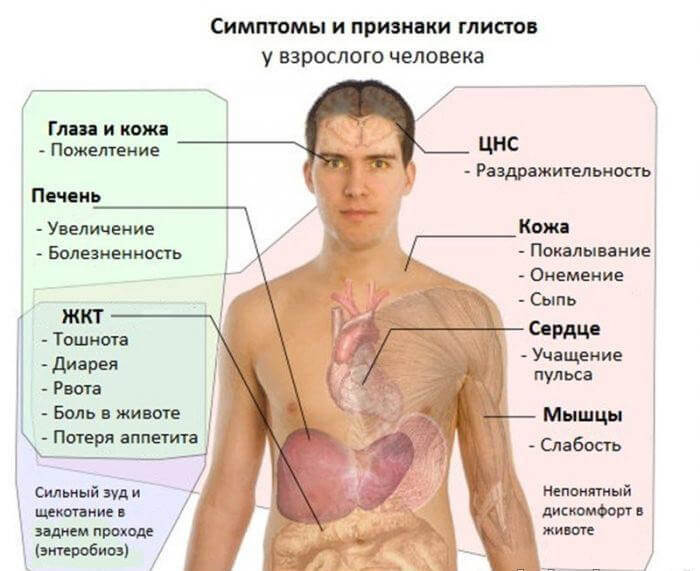 Причины возникновения папилломы и появление паразитов
